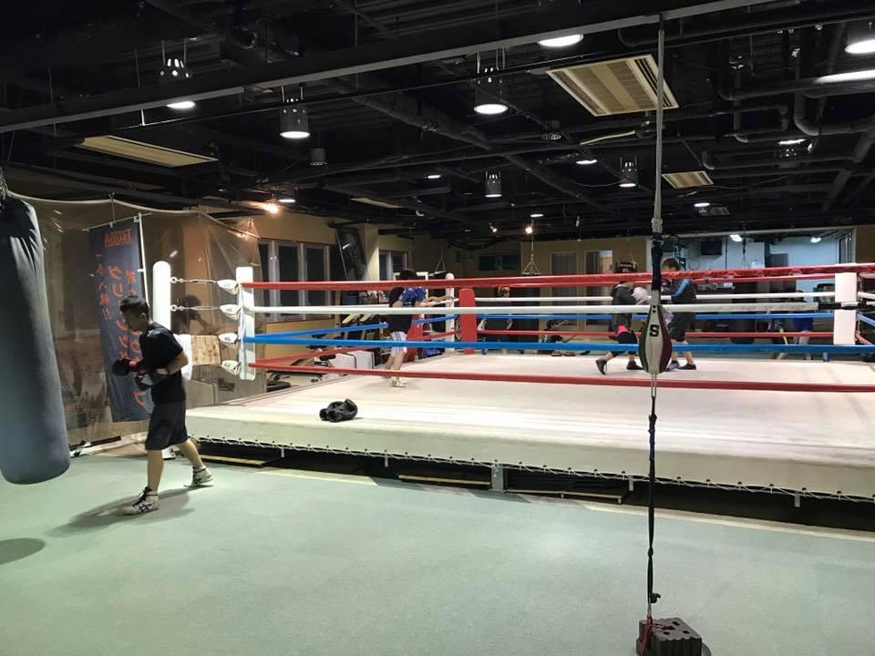 ボクシング トレーナー