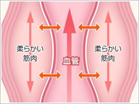 pic_p-stretch_02-1